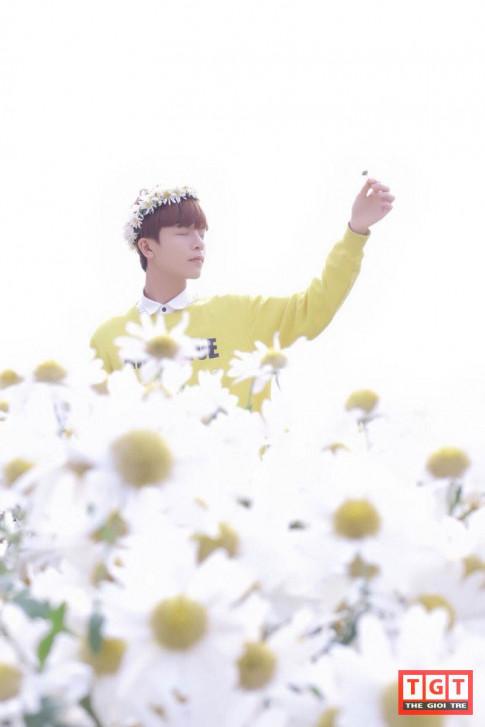 Chang Kang Tae Oh cua Vien DH Mo lai gay sot voi bo anh mo mang ben cuc hoa mi