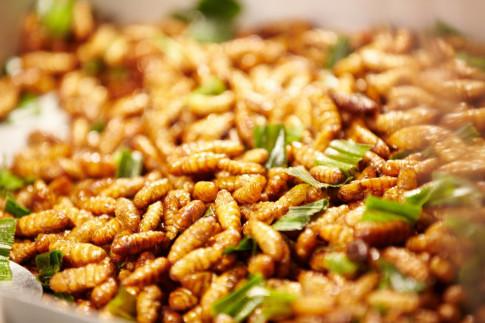 Những món đặc sản nổi tiếng Châu Á không phải ai cũng dám thử