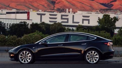 Bo ra hang tram ty, Elon Musk mua lai ten mien anh su dung luc khoi nghiep va de do
