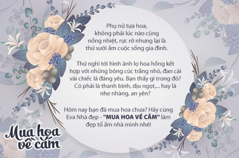 Hoa đồng tiền nổi tiếng nhanh hỏng, mẹ Việt mách nhau để xa tivi sẽ chơi được 2 tuần