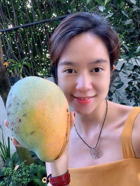 Lý Hải - Minh Hà thu hoạch vườn rau trái, khoe quả nào quả nấy đều siêu to