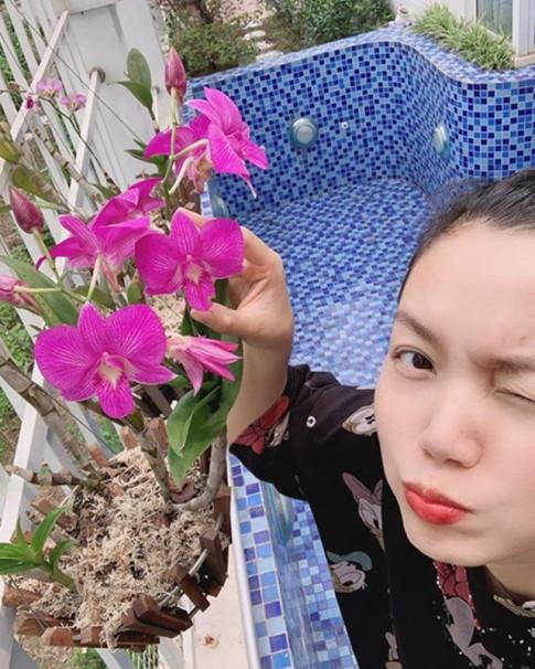 Bo nha giua long Thu do, Nguyen Ngoc Anh chuyen ra ngoai thanh tu uom cay, trong hoa