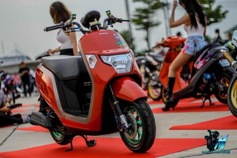 Honda Dunk 50 độ mang vẻ đẹp quyến rũ bên khối đồ chơi giá trị