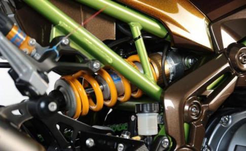 Kawasaki Z900 độ tông màu lạ cùng dàn đồ chơi siêu khủng